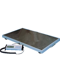 Walk-On Weigh Scales