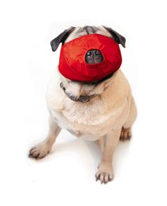 Quick Muzzle for Pugs